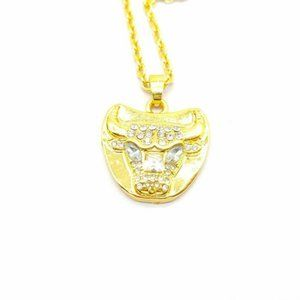 USA Chicago Bulls Championship Pendant Necklace